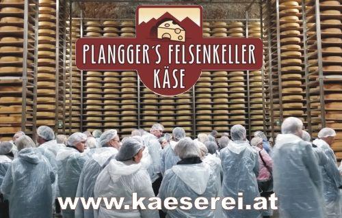 Plangger's Bio-Felsenkeller-Käse