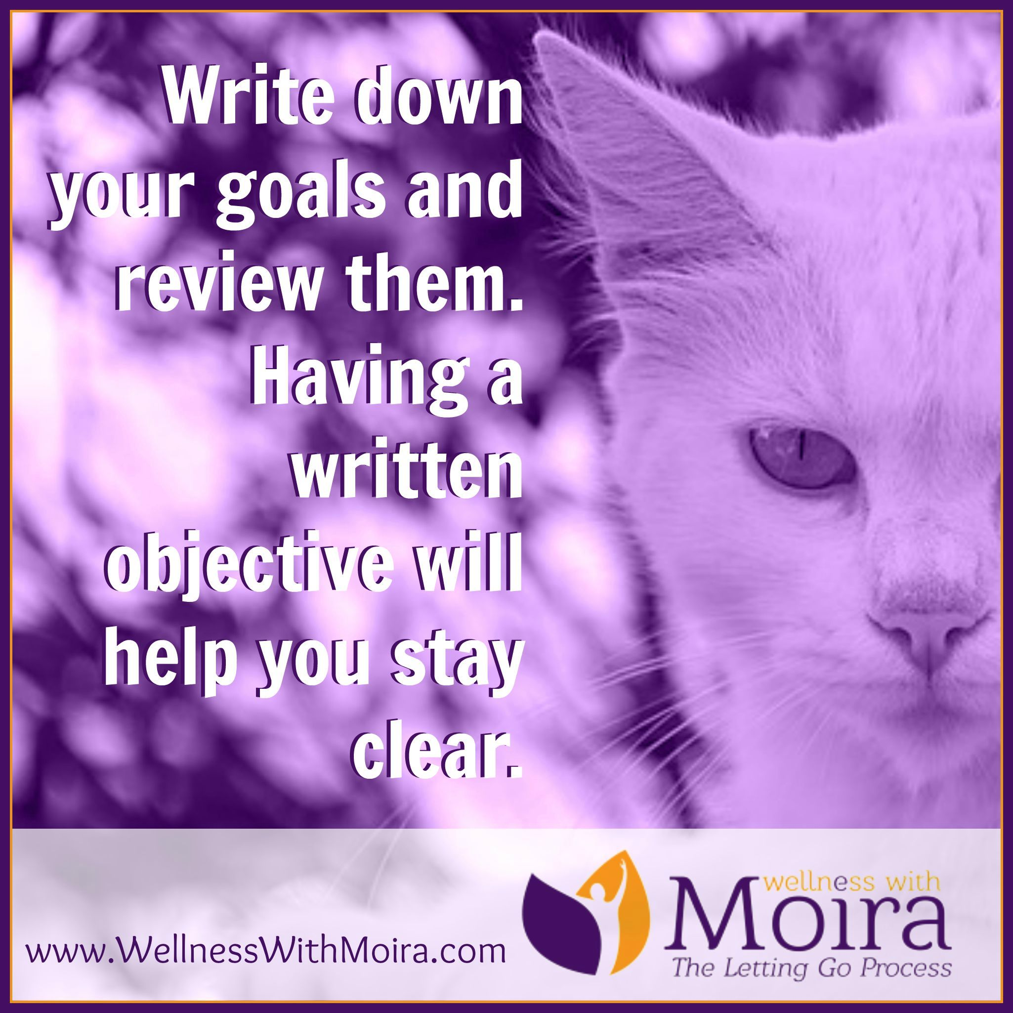 Write Down Your Goals And Review Them Having A Written