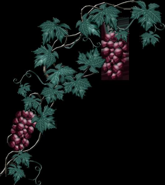 Resultado de imagen para gifs de racimo de uvas
