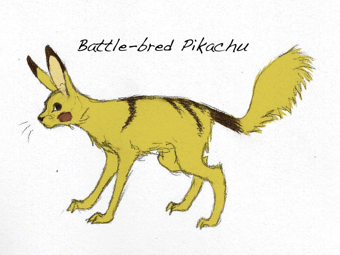 pokemon subspecies   Tumblr