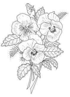 New Pansy Rubber Stamp Designs For Penny Black Ca Emilywallis Com Flower Drawing Flower Drawing Design Flower Coloring Pages