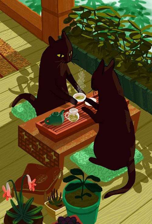 Let's go somewhere and have a lovely cup of Rose Hip tea, just us Tea Cats.
