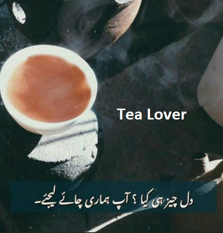 My Diary In 2020 Tea Lover Tea Lover Quotes Green Coffee Bean