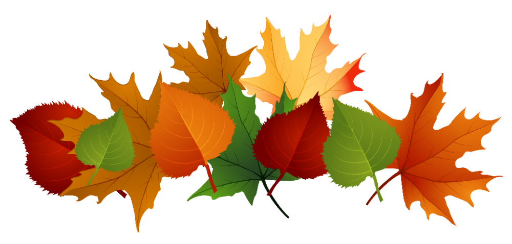 Free Fall Leaf Transparent Background Download Free Clip Art Free Clip Art On Clipart Library Fall Clip Art Fall Leaves Coloring Pages Fall Leaves Png