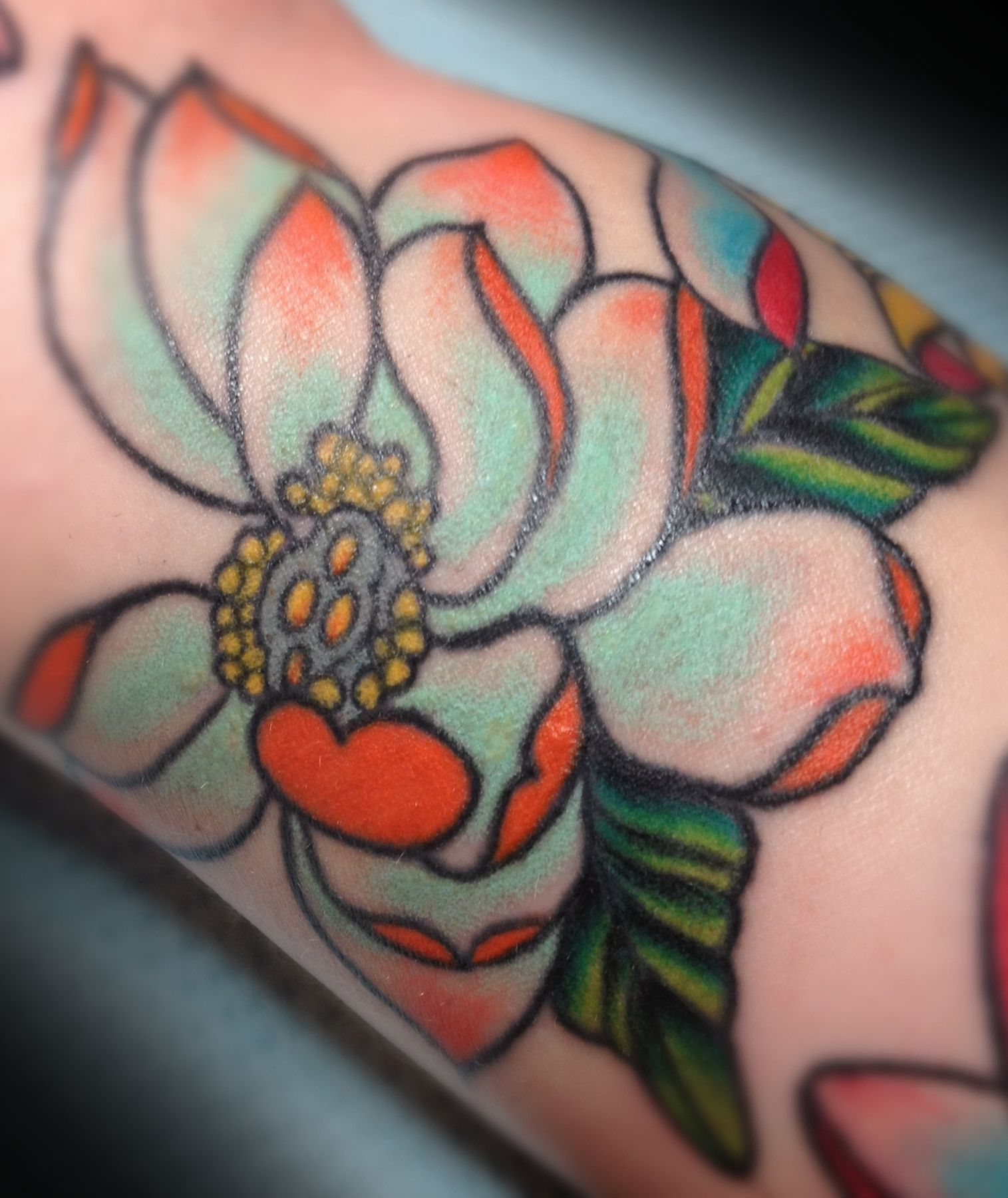 The mint green colorflorida orange blossom ink pinterest the mint green colorflorida orange blossom izmirmasajfo