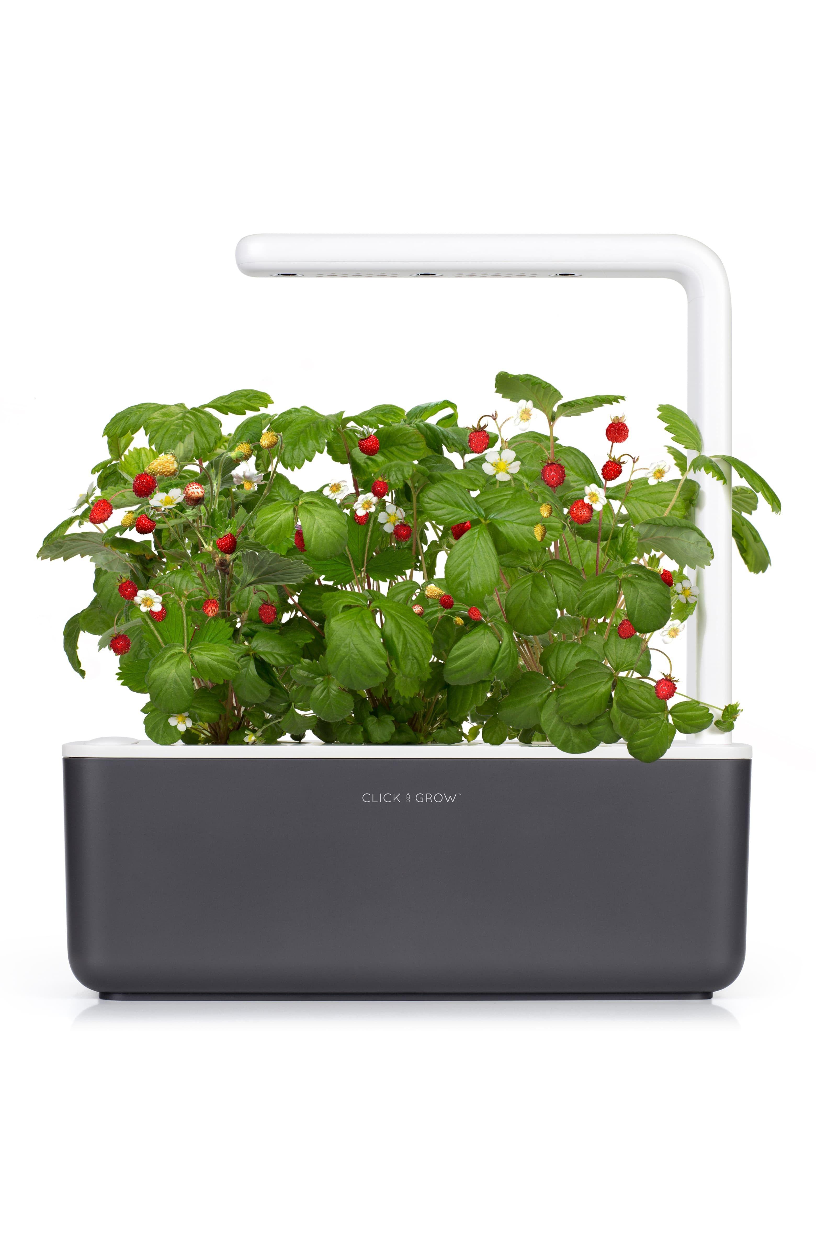 Smart Garden 3 Self Watering Indoor Garden My Future 400 x 300