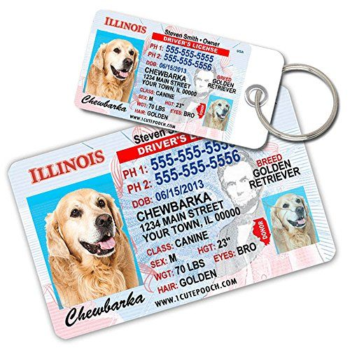 Illinois Driver License Custom Dog Tags for Pets (2) and