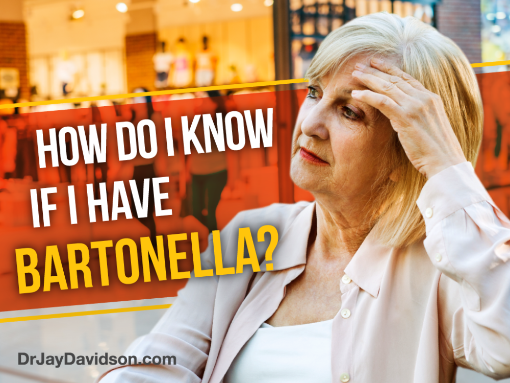 Do I Have Bartonella? Dr. Jay Davidson in 2020 Lyme