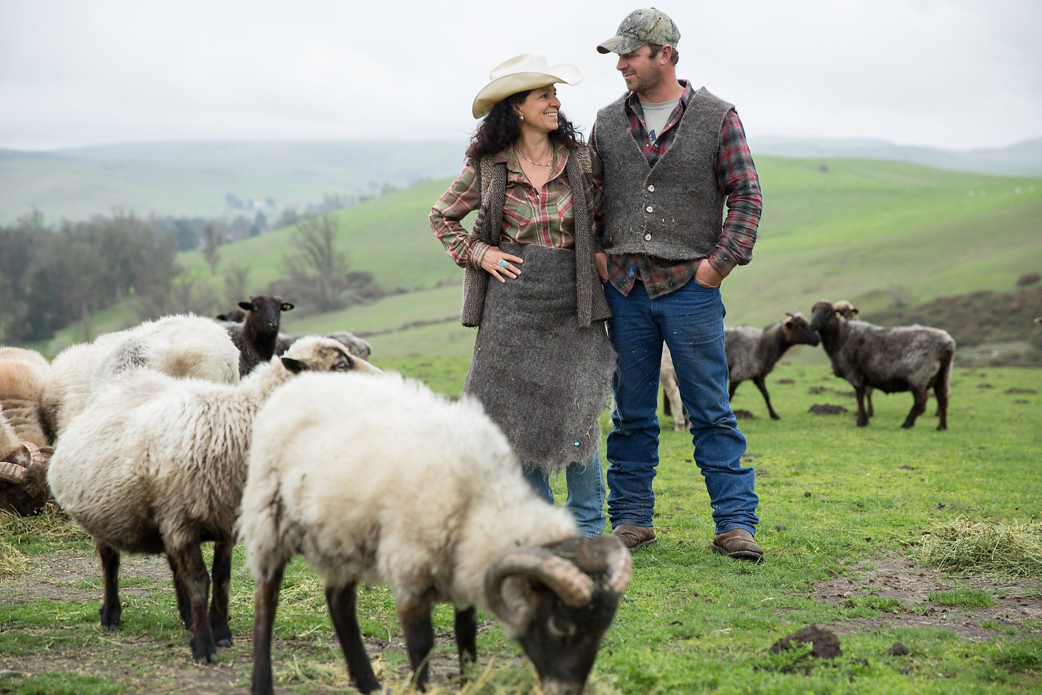 Bay Area's locally grown fibers go straight to bedding