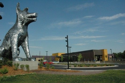 Municipal Animal Shelter Leed Platinum Certified Denver Co Studio Cpg With Images Animal Shelter Shelter Design Animals