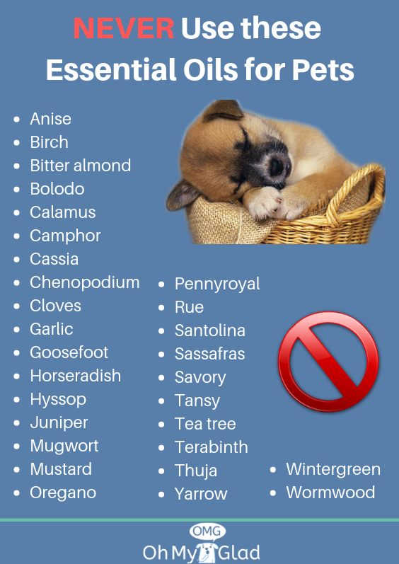 Anti Flea Tick Dog Collar Ticks On Dogs Dog Safety Fleas