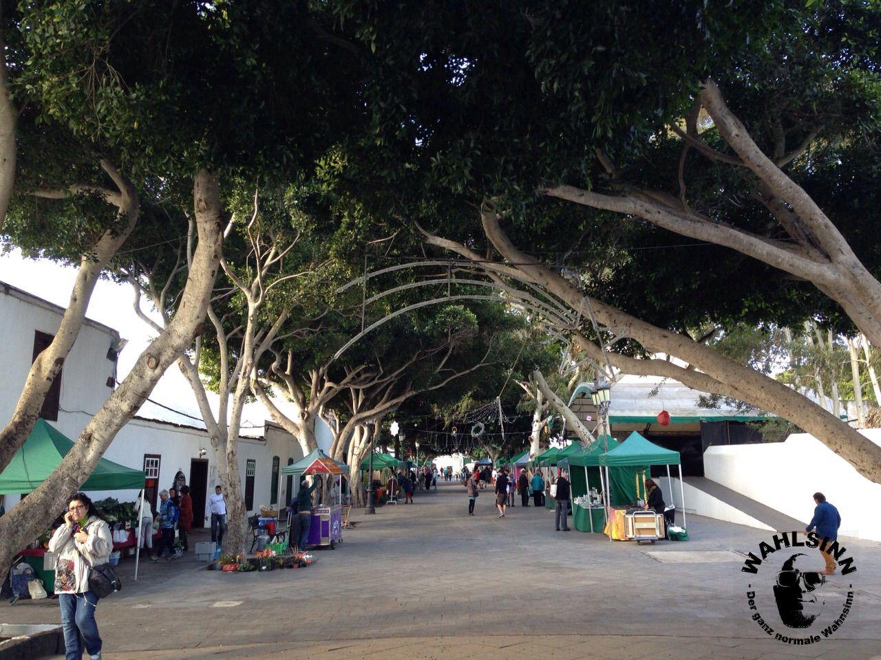 Lanzarote - Haria Markt