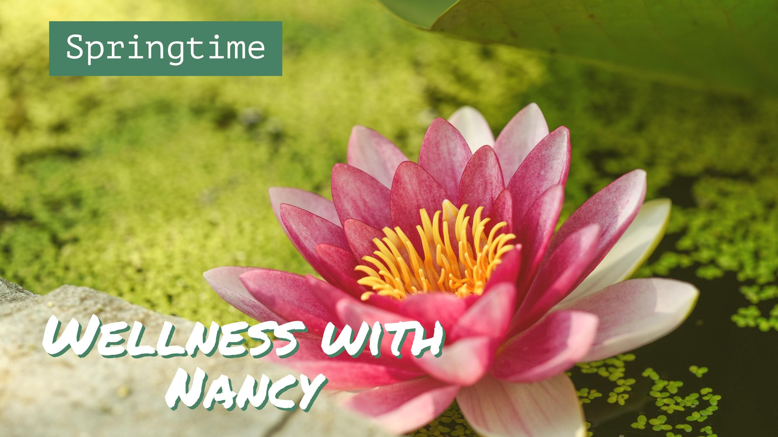Mentoring With Nancy Awaken With Light Lily Flower Wallpaper Lily Wallpaper Lotus Flower Wallpaper Coolest lily flower wallpaper images