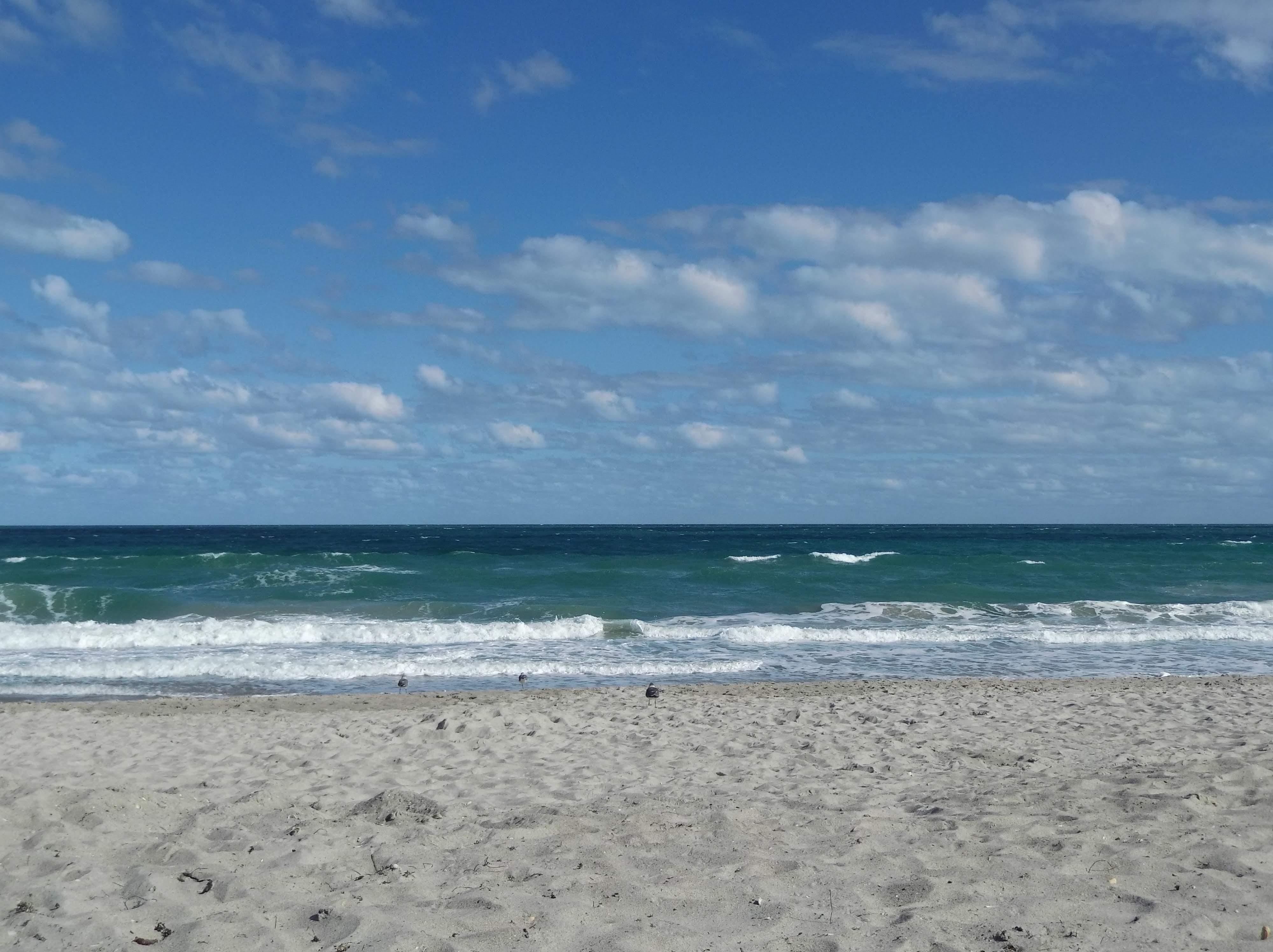Beach at Melbourne Florida 4000x2992[oc] #Music #IndieArtist