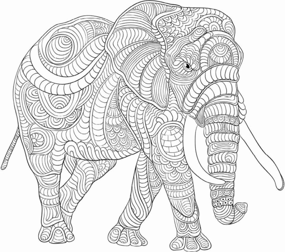 Coloring Pages Animals Hard Luxury Get This Difficult Elephant