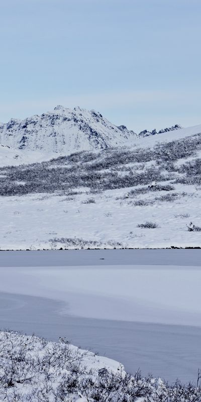 A winter wonderland awaits -- November is the time to drive the Haines Highway for stunning landscapes and fabulous eagle viewing!  Learn more about this natural, scenic drive location at http://www.examiner.com/article/beautiful-scenic-drive-on-alaska-and-canada-s-haines-highway