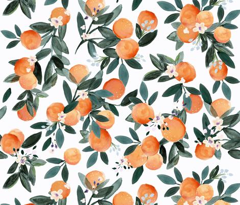 Wallpaper Dear Clementine oranges on white in 2020