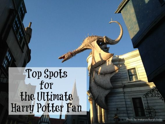 We've narrowed down the best spots to immerse your family in the Harry Potter fun both here in the U.S. and abroad!
