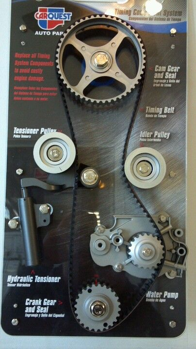 Timing belt assembly this is what a timing belt looks like also timing belt assembly this is what a timing belt looks like also shown is tensioner assembly idler pulleys water pump and cam crank pulleys fandeluxe Images