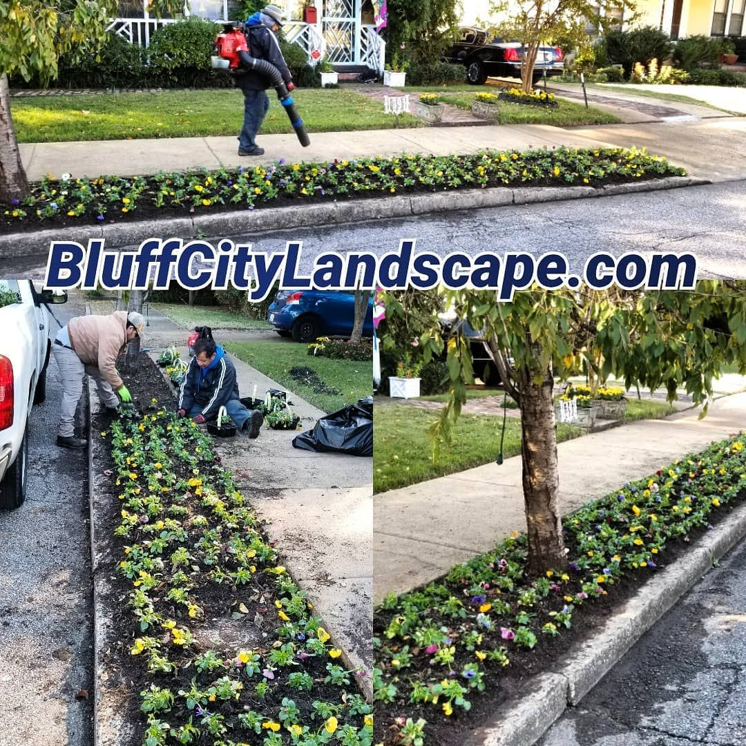 Nice brisk Saturday morning for flower planting in Midtown Memphis TN