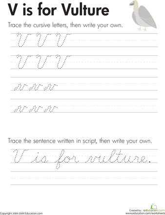 Cursive Handwriting V Is For Vulture Education Com Learn Handwriting Teaching Cursive Learning Cursive Words starting with an v. cursive handwriting v is for vulture