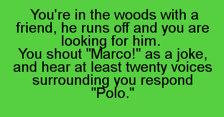 "You're in the woods with a friend. He runs off and you are looking for him. You shout, ""Marco!"" as a joke and hear at least twenty voices surrounding you respond, ""Polo."""