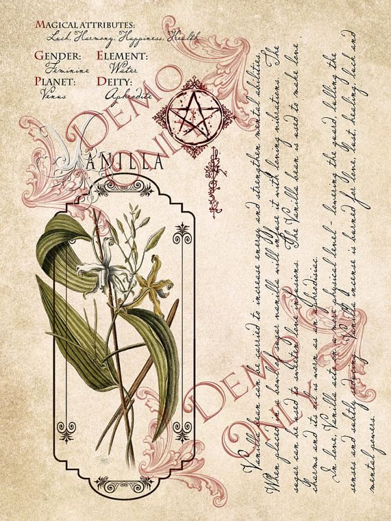 Book of Shadows 4 page set 10