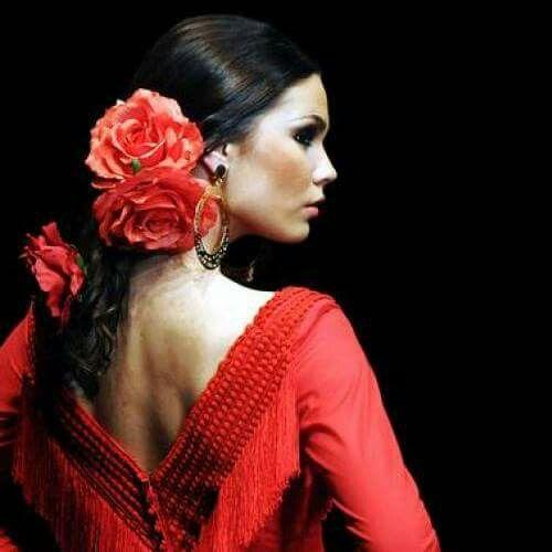 Pin By Roelien Hattingh On Dance Spanish Hairstyles Spanish Dancer Flamenco Dancers