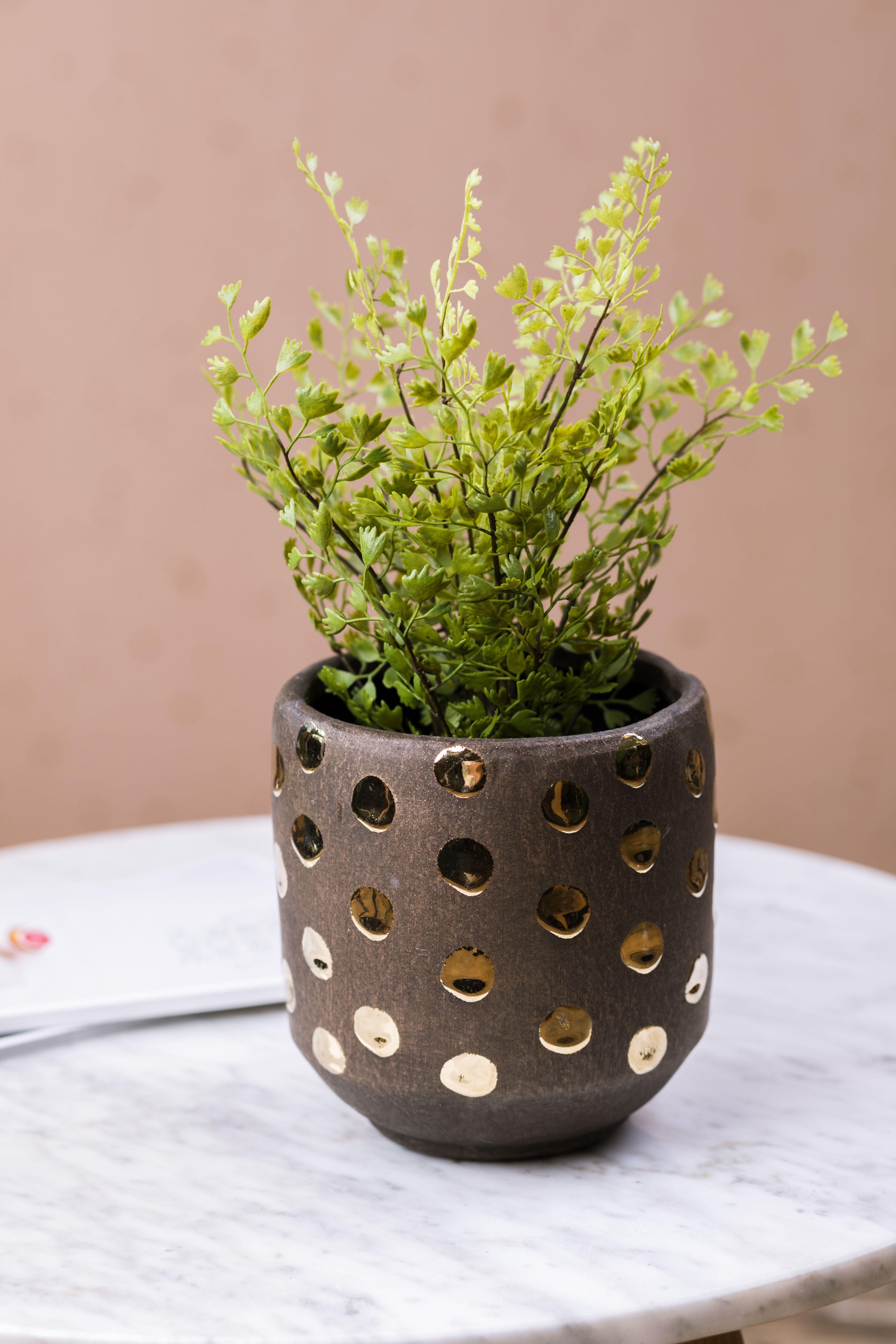 Gold Dotted Flowerpot Flower pots, Gold dots, Faux florals