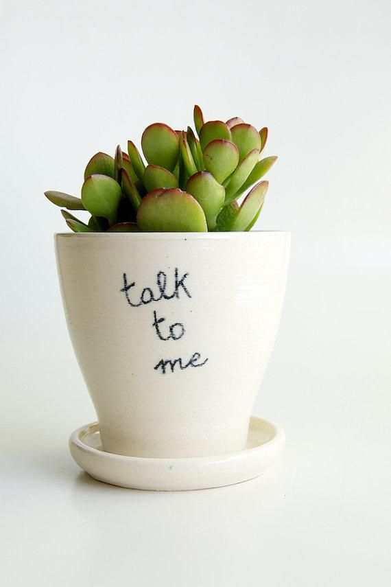 A Witty Housewarming Gift White Planters Succulent Planter
