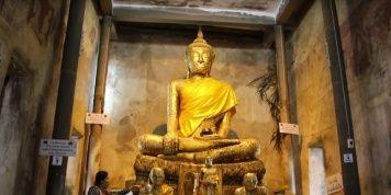 El árbol que predice los números de la lotería, está en Tailandia…