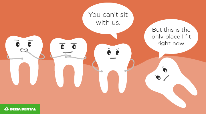 The Best Dental Jokes + Dental Memes to Tickle Your Funny ...