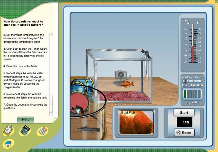 VIRTUAL LAB- How do organisms react to changes in abiotic
