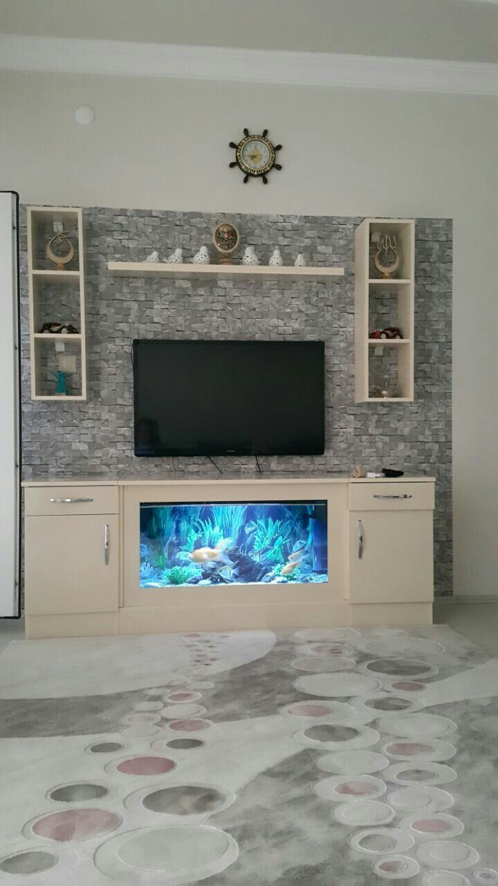 TV Aquarieneinheit Nummer 12   Décoration appartement, Appartement ...