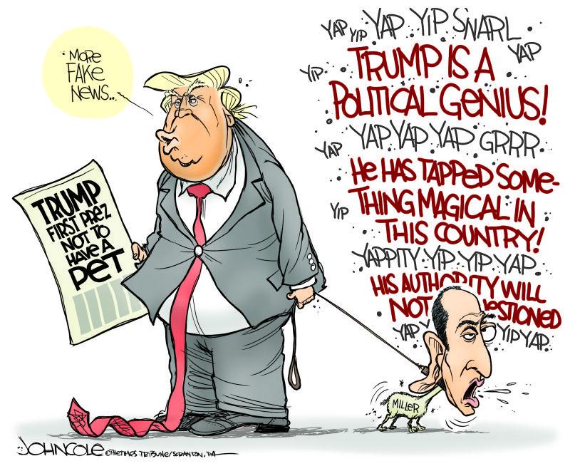 Cartoons Art Political Social Satire Trump