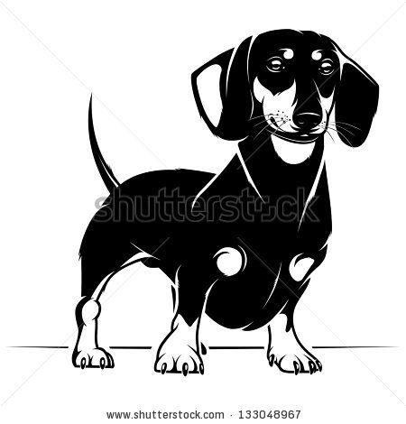 Dog Dachshund Vector Illustration Stock Vector Dachshund Art