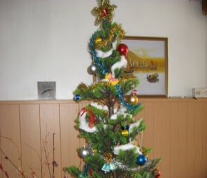 this is how a traditional christmas tree in argentina would look they put around the
