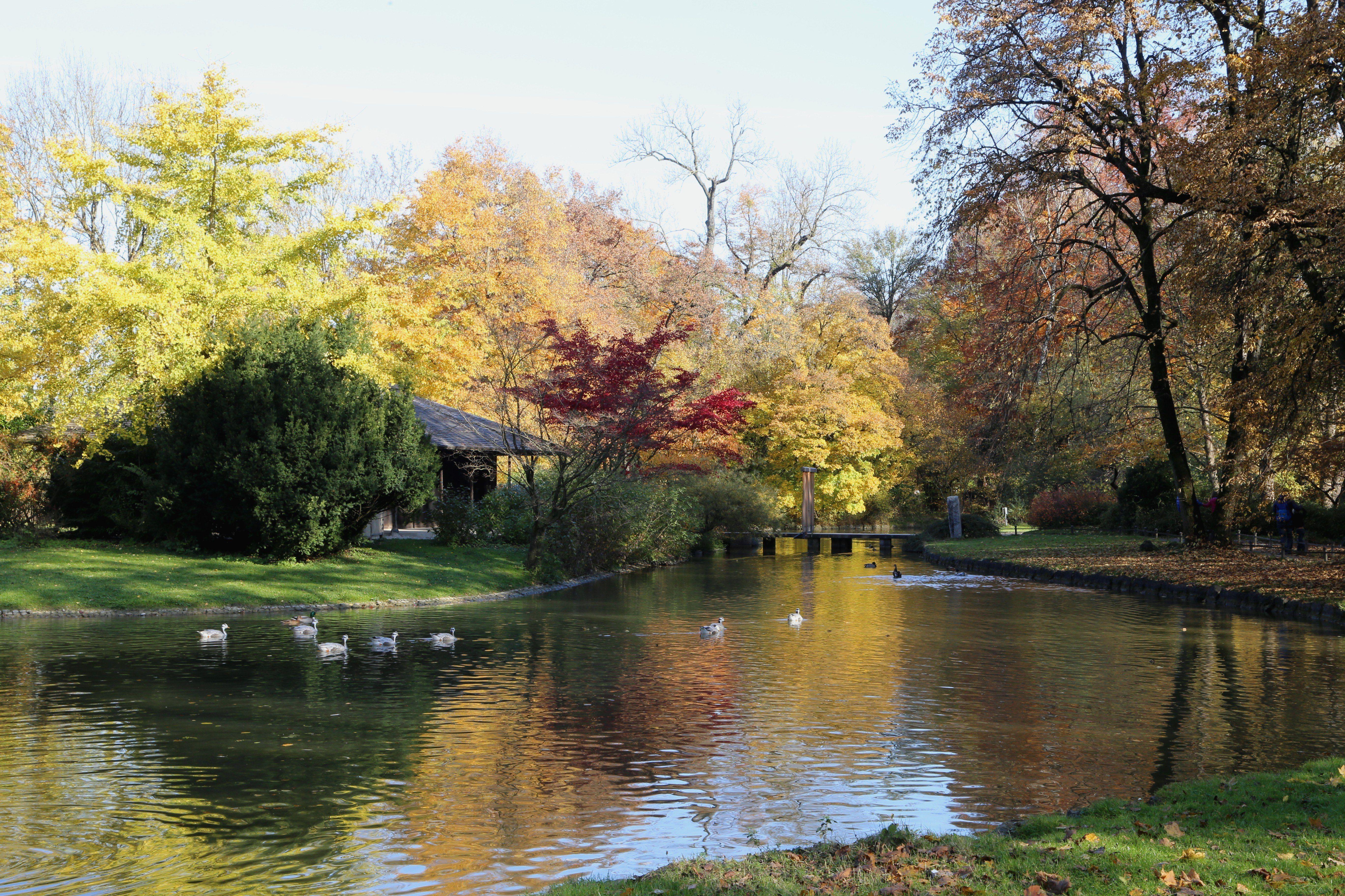 File Japanisches Teehaus Englischer Garten Muenchen 1 Innerhalb Japanisches Teehaus Englischer Garten Fur Einen Stilvollen Ersten Eindruck Outdoor Water River
