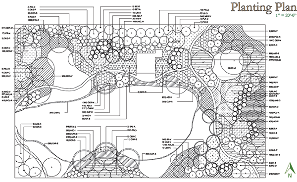 Planting Plan For The Design L Planting Plan Pinterest