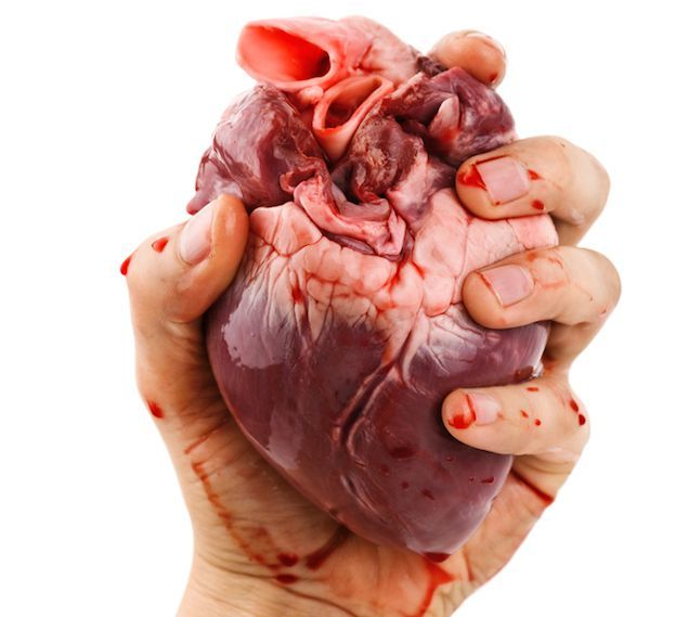 Image Result For Heart Ideas For My Painting Pinterest Anatomy