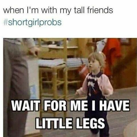 Pin By Alexandra On Funny Stuff With Images Short Girl Memes