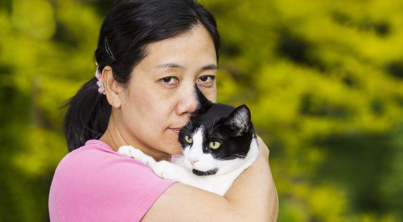 Beautiful Korean Cat Names 79 Creative Ideas Find Cat Names Cat Names Cats Animals