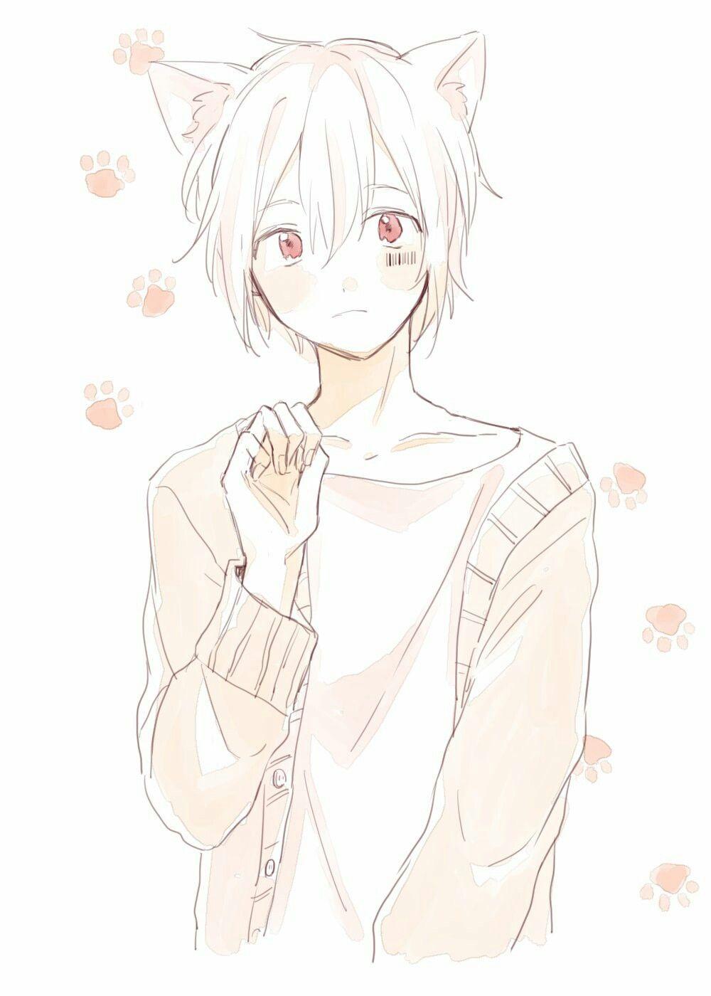 Little Shy Jamie Anime Neko Kawaii Anime Cute Anime Boy