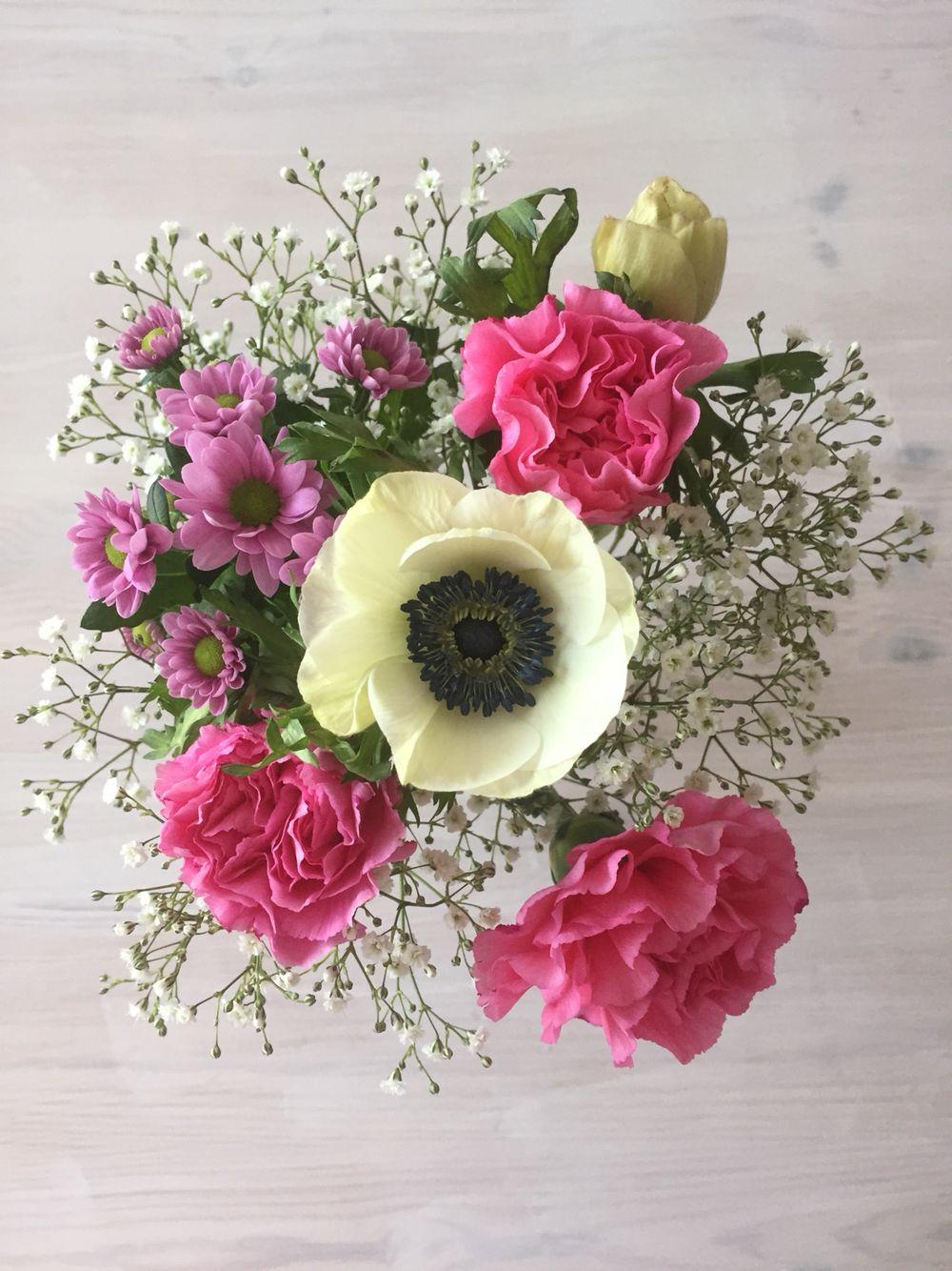 Spring flowers flowers pinterest spring flowers and flowers