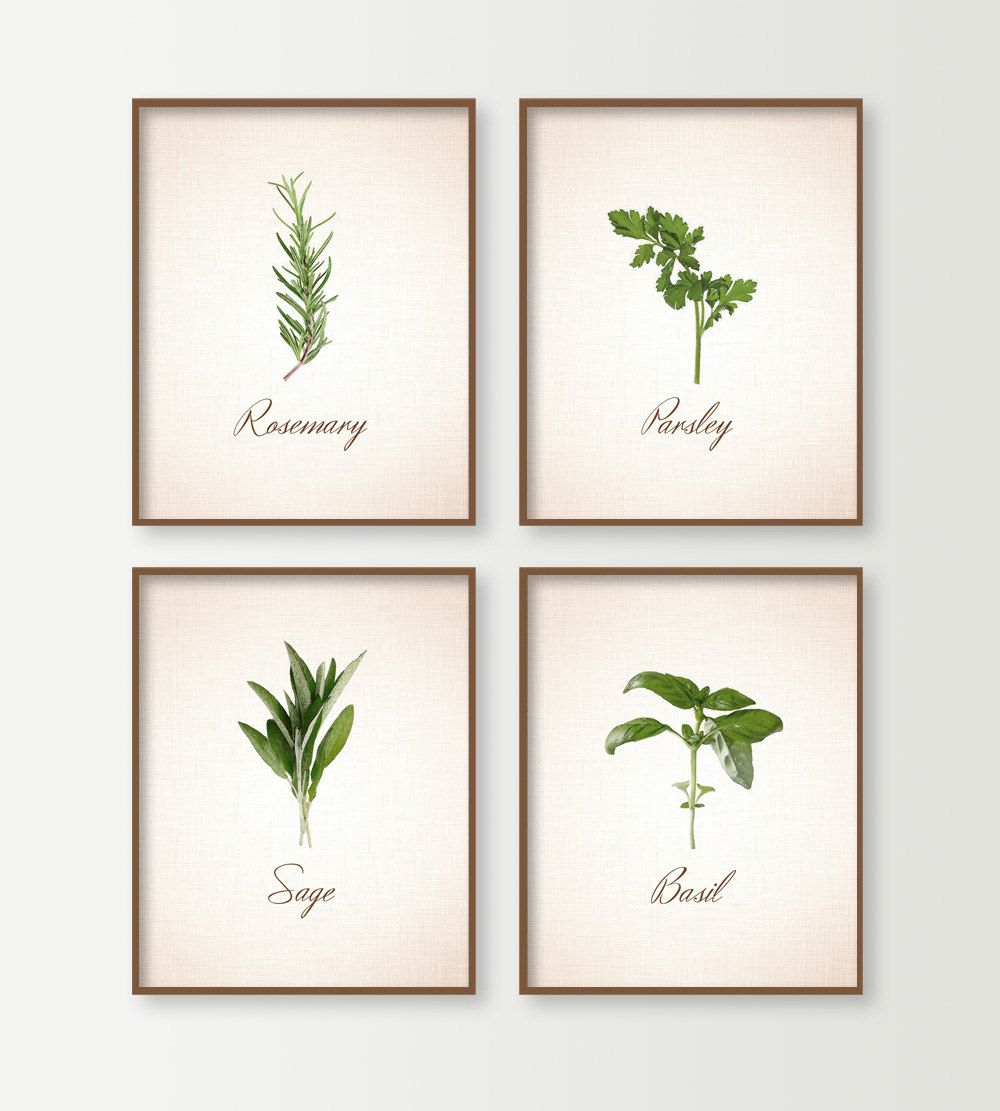 Kitchen decor kitchen wall decor kitchen art signs set of 4 with cooking - Plaque decorative cuisine ...