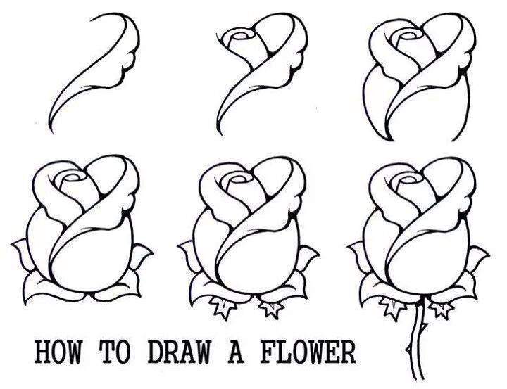 طريقة رسم وردة نصف مفتحة Beautiful Flower Drawings Disney Paintings Color Pencil Drawing