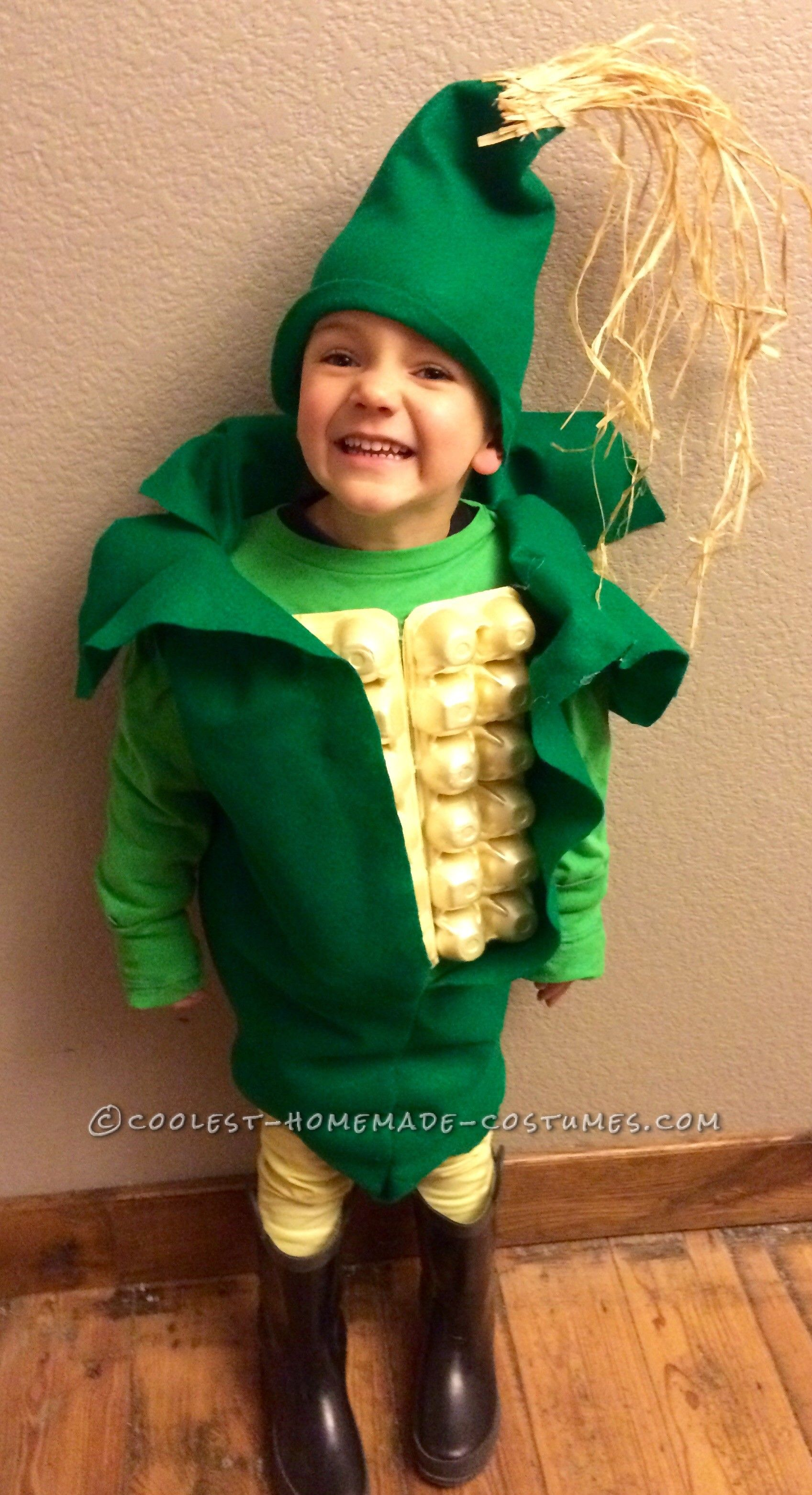 corny costume for a kid | coolest homemade costumes | pinterest