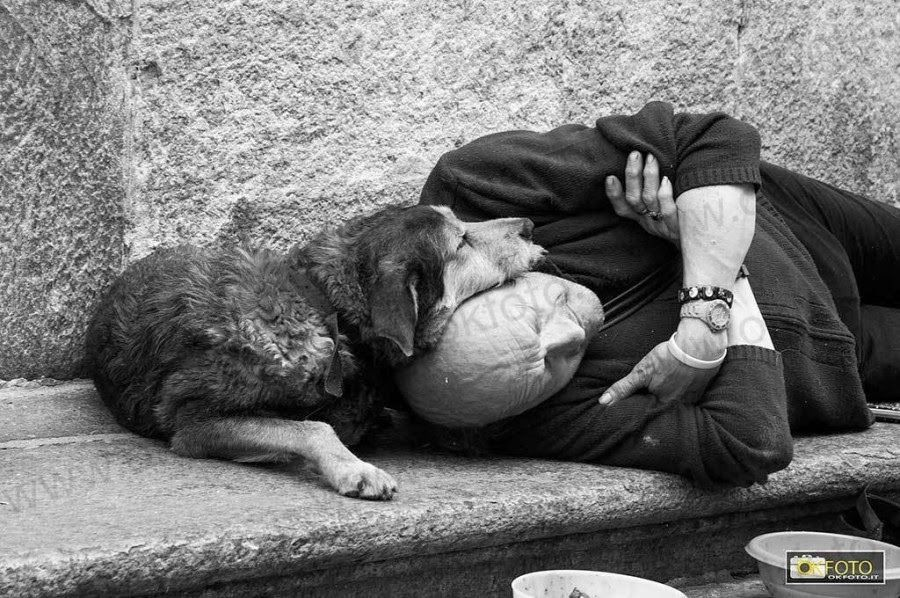 Heartwarming Photographs of Homeless People with Their Dogs. The juxtaposition of wealth and poverty in number 13 is riveting