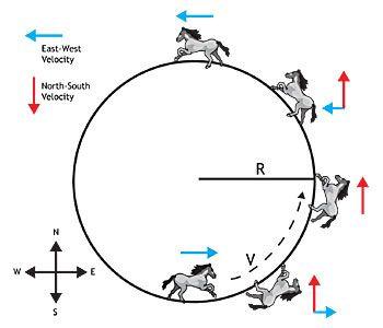 Circus Physics: Centripetal Acceleration: A complete