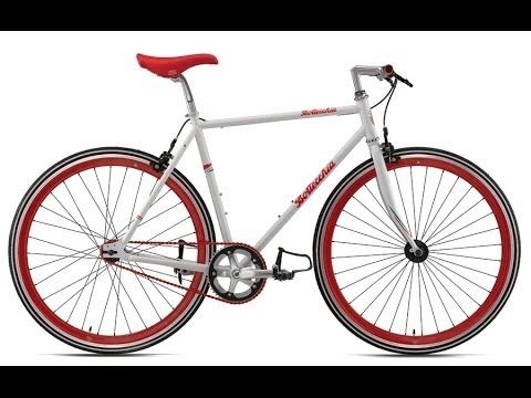 הגרלת אופניים חגיגית בשבת הקרובה - 8.3.14 ביריד האופניים הגדול של הצפון!